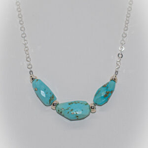 Shop Wyoming Turquoise & Sterling Silver Necklace TPN-19