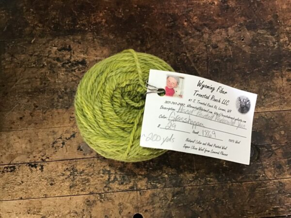 Shop Wyoming Tronstad Ranch Hand Painted Rambouillet 2 Ply Worsted Weight Yarn