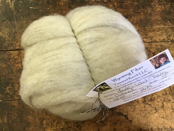 Shop Wyoming Tronstad Ranch Oatmeal Lamb's Wool Roving