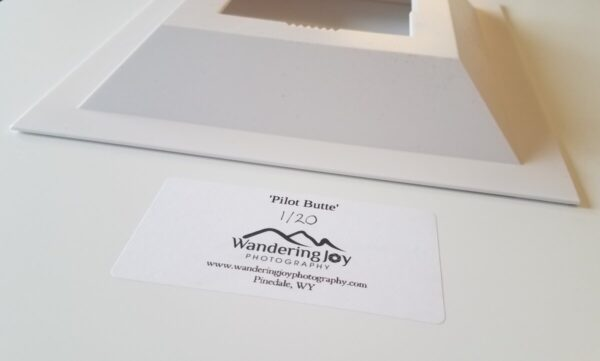 Shop Wyoming 16×20 Wild Horse Photo Acrylic Print