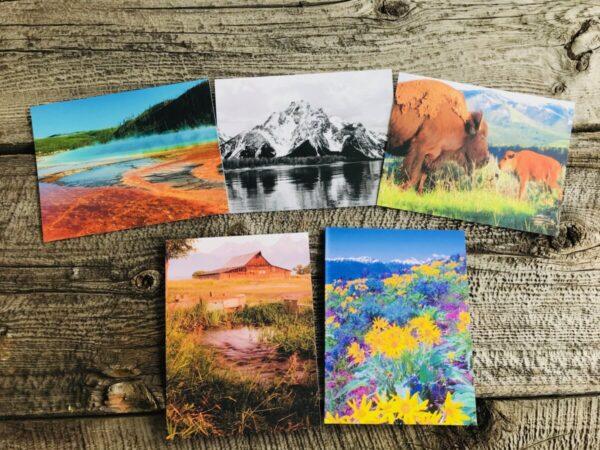 Shop Wyoming Wyoming Card Pack