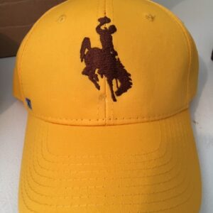 Shop Wyoming Wyoming Bucking Horse Gold Cap