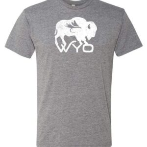 Shop Wyoming Wyo Fly Bison Logo Tee – Heather Gray