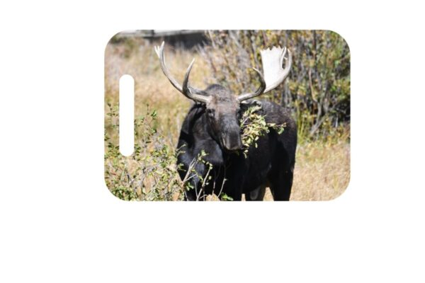 Shop Wyoming North American Grazers' Luggage ID Tags