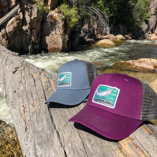 Shop Wyoming Fish Rising Trucker Hat – Steel