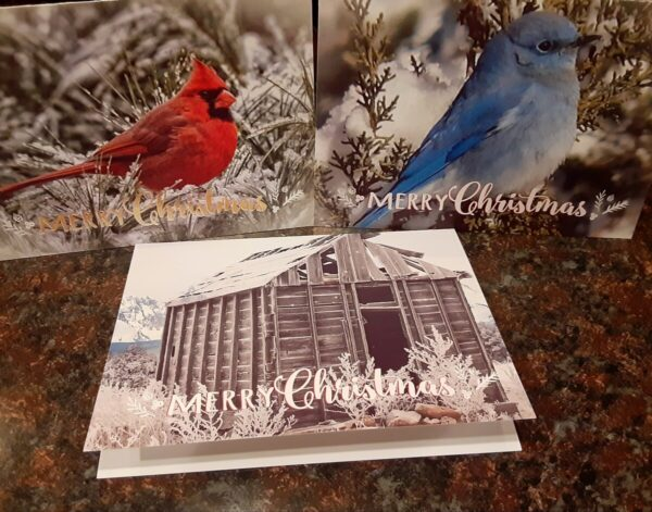 Shop Wyoming 5×7 Photo Christmas Cards (Set of 12)