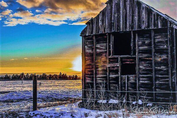 Shop Wyoming 8×8 photo tile
