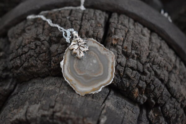 Shop Wyoming Wyoming Petrified Wood Necklace, Sterling Silver