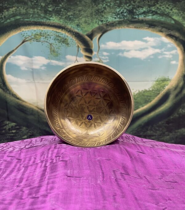 Shop Wyoming Himalayan Etched Singing Bowl Note A