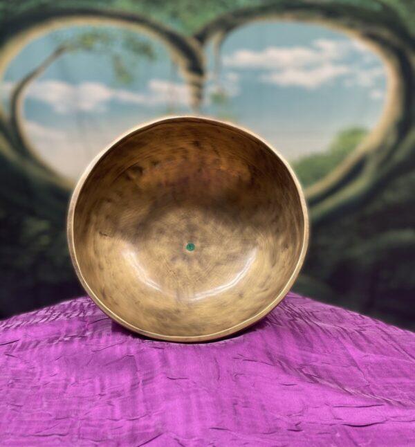 Shop Wyoming Himalayan Singing Bowl Note F