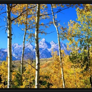 Shop Wyoming 16×20 Framed Grand Teton Canvas
