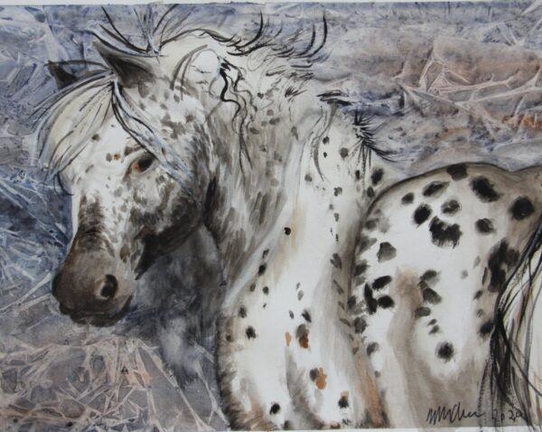 Shop Wyoming Wild Stallion