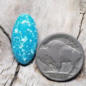 Shop Wyoming Mongolian Turquoise cabochon
