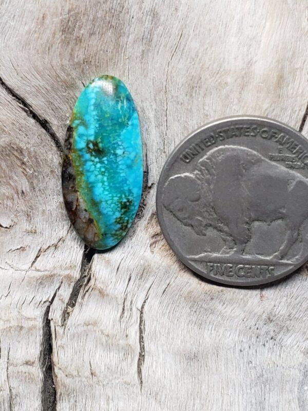 Shop Wyoming Kingman Turquoise Long Oval