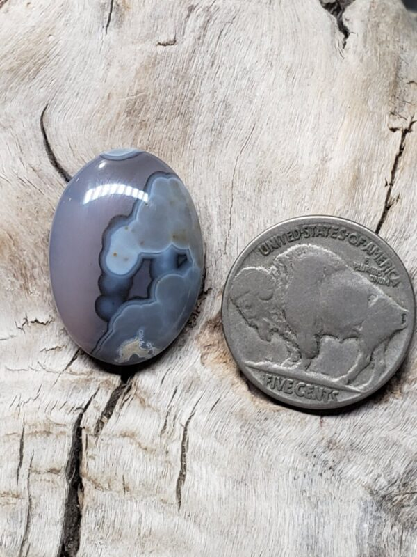 Shop Wyoming Cody Wyoming Yellowstone Agate Oval