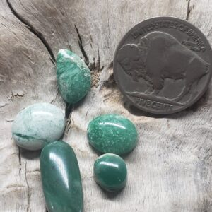 Shop Wyoming Yellowstone Variscite parcel assorted