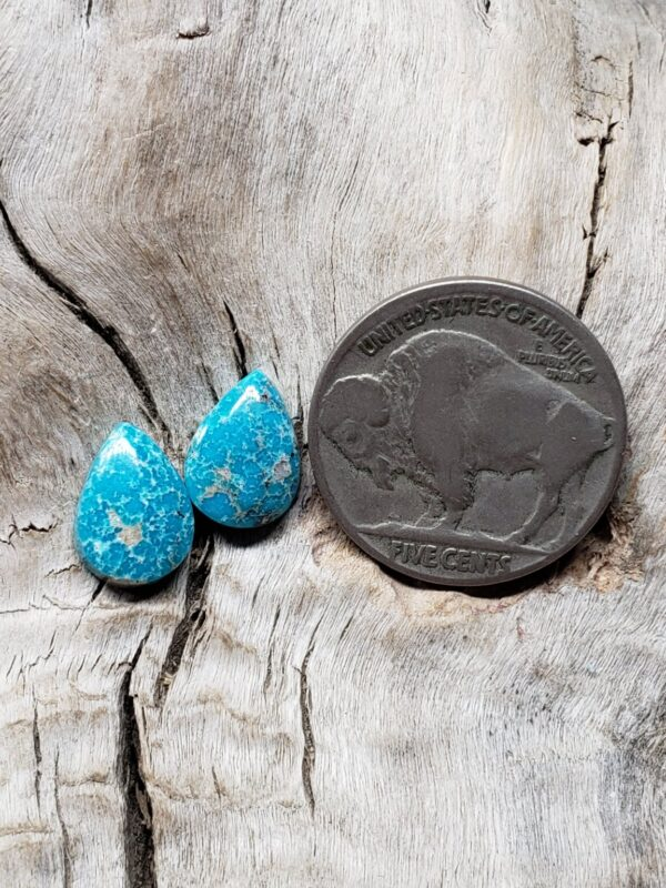 Shop Wyoming Mongolian Turquoise pair