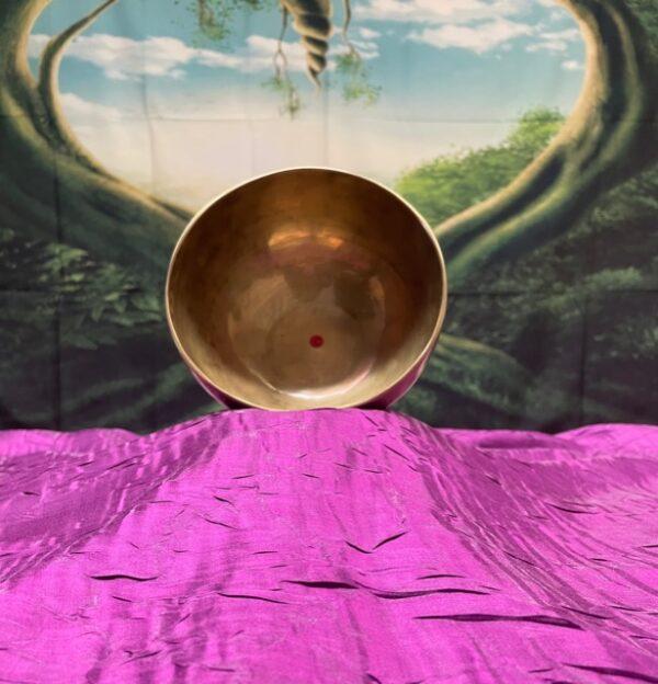 Shop Wyoming Himalayan Singing Bowl Note C