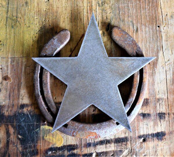 Shop Wyoming Metal Star Mounted on Horseshoe